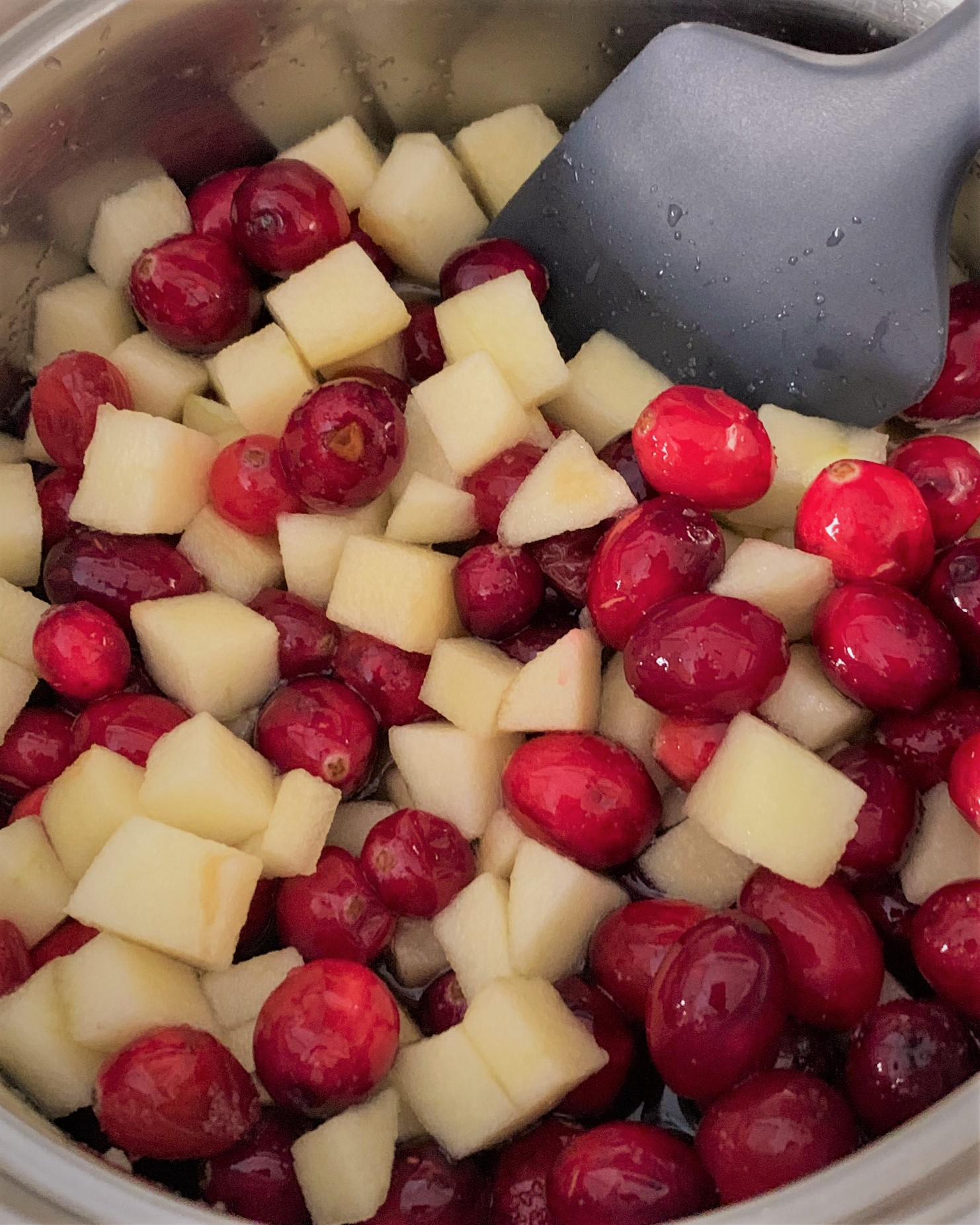 All the ingredients for our Apple-Cinnamon Cranberry Sauce in the pot
